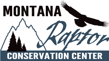 Montana Raptor Conservation Center